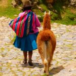 Photo Essay: Machu Picchu, Peru